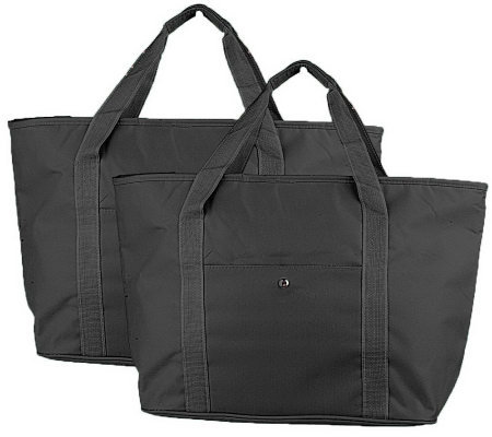 Set of 2 Thermost Insulated Carry All Tote Bags