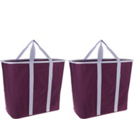 SnapBasket Set of 2 Laundry Totes by CleverMade