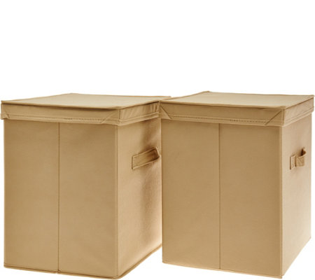 Pop-it Set of 2 Collapsible Storage Bins with Lids