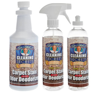 Don Aslett's Carpet Stain and Odor Eliminator Concentrate - V33988