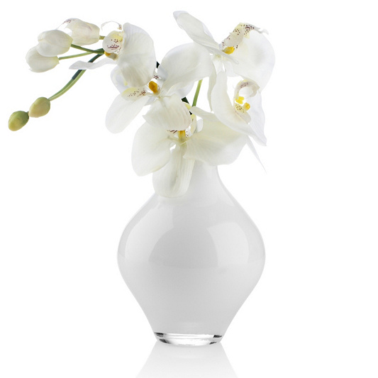 Kelly Hoppen White Orchid In Glass Vase Page 1 Qvc Uk
