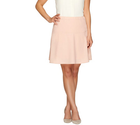 SA by Seth Aaron Skater Skirt with Side Zipper