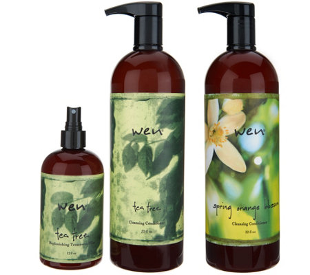 WEN by Chaz Dean Cleanse and Replenish Kit