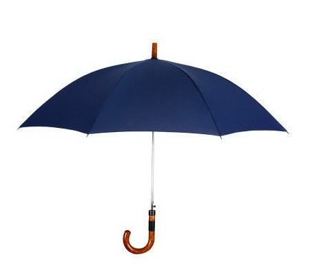 Leighton Executive Automatic Open Stick Umbrella