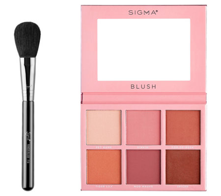 Sigma Beauty's Cheeky Blush Set
