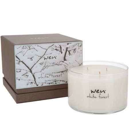 WEN by Chaz Dean 22 oz 3-wick Winter Candle Auto-Delivery