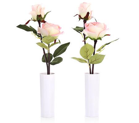 lumida flora leuchtende blumen rosen in vase timerfunktion h ca 40cm 2tlg page 1. Black Bedroom Furniture Sets. Home Design Ideas