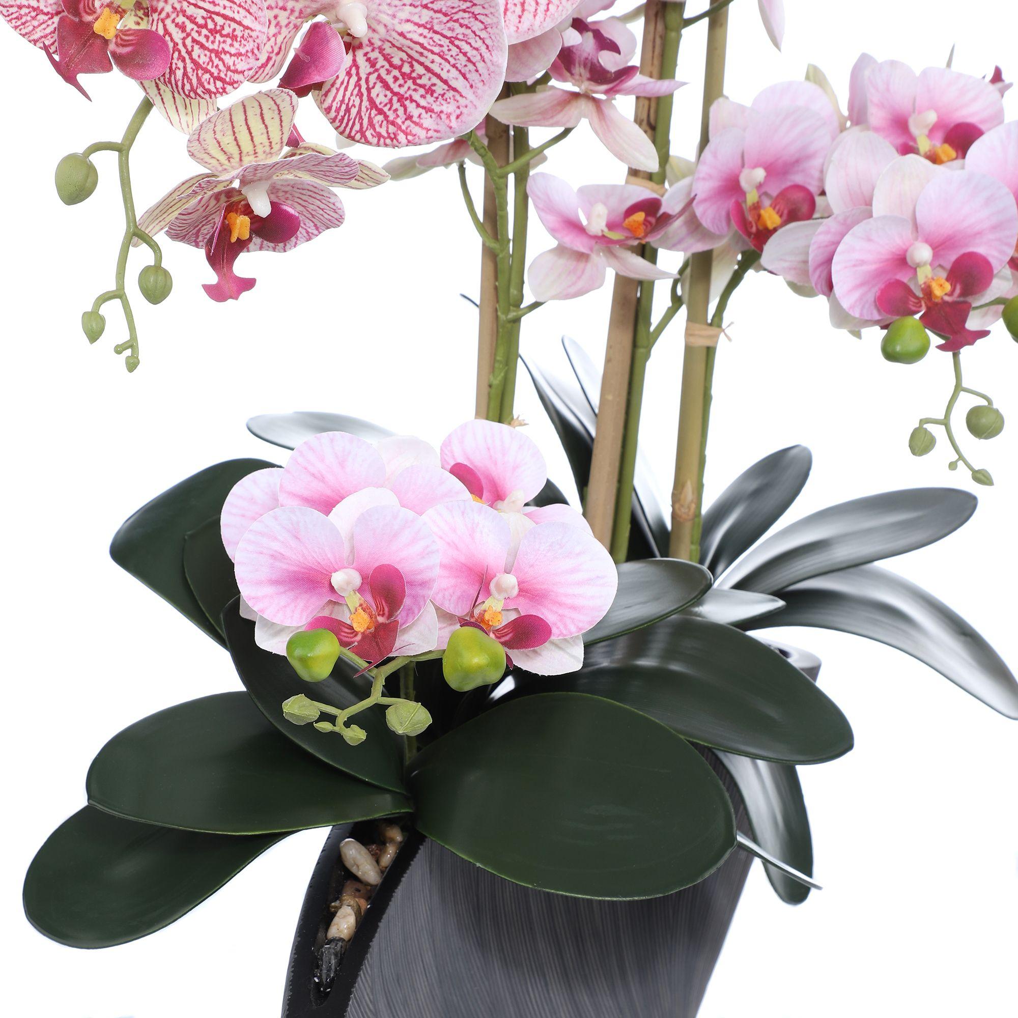 Gartenwerkzeuge aufrecht Stamm-Clips Mini-Stiele Blume ViaGasaFamido 100 St/ück Orchideen-Clips aus Kunststoff Orchideen-Unterst/ützungs-Clips