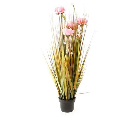 pfingstrose zeichnen blumen zeichnung, lumida flora leuchtende blumen pfingstrosen outdoorgeeignet h. ca, Design ideen