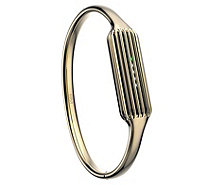 Fitbit Flex 2 Luxe Stainless Steel Bangle -Gold - E293625