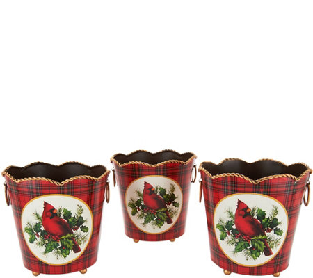 Set of 3 Metal Planter Baskets by Valerie