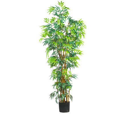 6' Curved Trunk Bamboo Tree by Nearly Natural