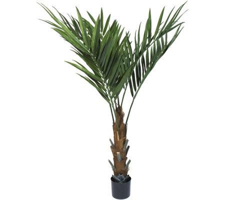 "Pure Garden 60"" Kentia Palm Tree"