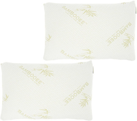 S/2 QueenMemory Foam Pillows w/ Rayon Made from Bamboo by Lori Greiner