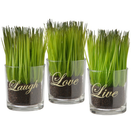 National Tree Company 3-Piece Sprout-Filled Glass Assortment