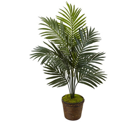 4 Kentia Palm Tree In Rope Planter By Nearly Natural