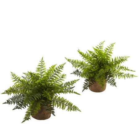 "15"" Ruffle Fern Burlap Base Set of 2 by NearlyNatural"