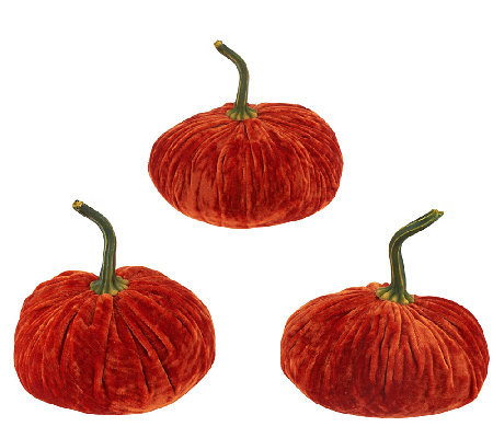 3-Piece Velvet Pumpkins by Valerie