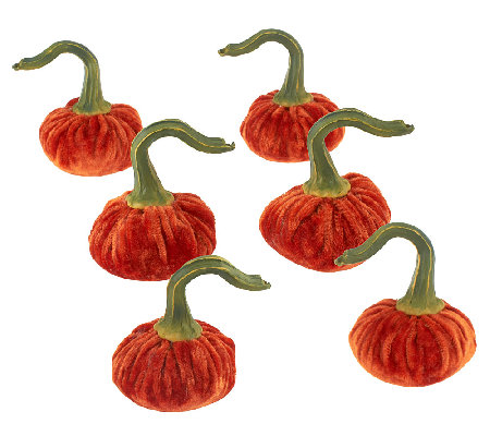 Set of 6 Mini Velvet Pumpkins by Valerie