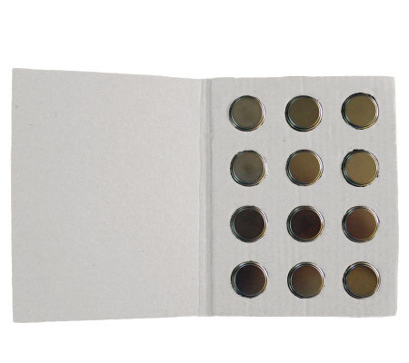 12 Replacement CR2032 Batteries for Valerie Parr Hill Eggs