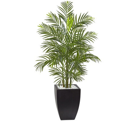 4.5' Areca Palm Tree with Black Planter by Nearly Natural