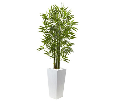 5 Bamboo Tree With White Planter By Nearly Natural