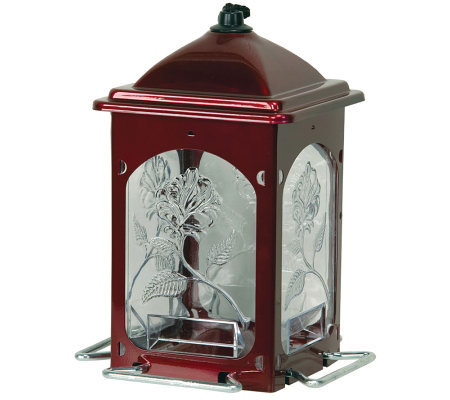Scarlet Rose Bird Feeder