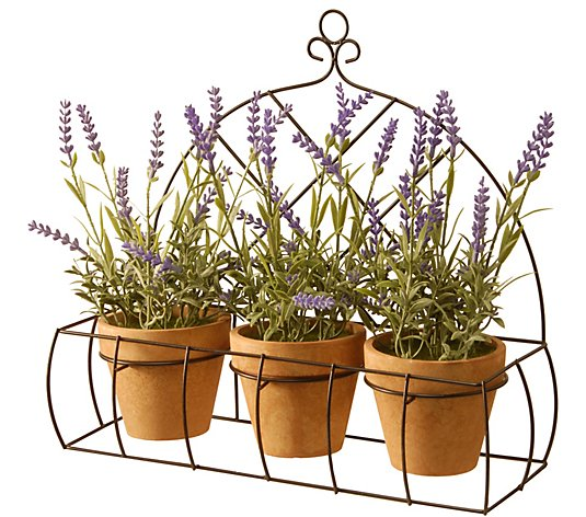 "National Tree Company 17"" Potted Lavender Plants in DecorRack"