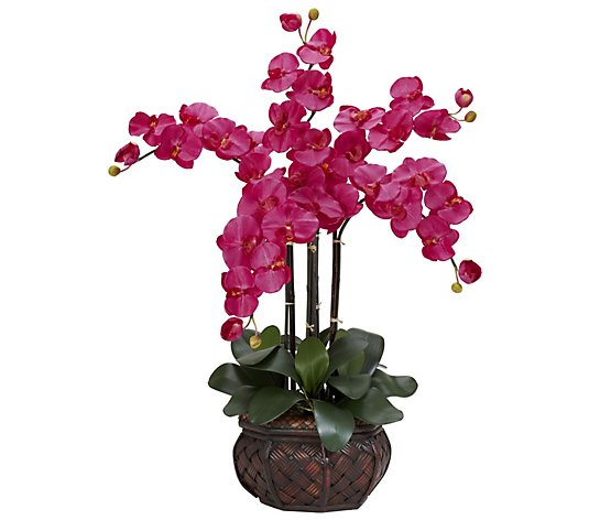 Phalaenopsis Vase Silk Flower Arrangement By Nearly Natural Qvc Com