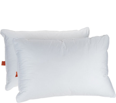 Great Sleep Set of 2 Jumbo Pillows with Allergen Barrier