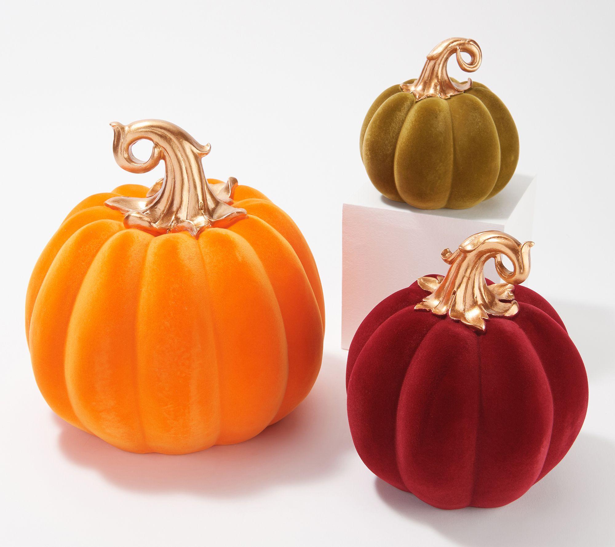 Barbara King Set Of 3 Decorative Velvet Pumpkins Qvc Com