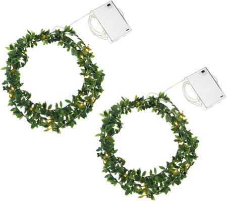 Kringle Express S/2 Boxwood Vine Fairy Micro Light Strands w/Timer
