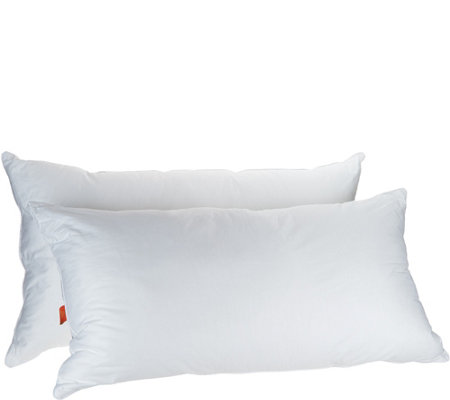 Great Sleep Set of 2 King Pillows with Allergen Barrier