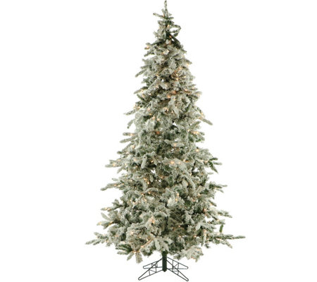 Fraser Hill Farm Prelit 7 5 Flocked Mountain Pine Tree W Le