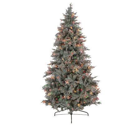 bethlehem lights prelit lifelike blue spruce christmas tree