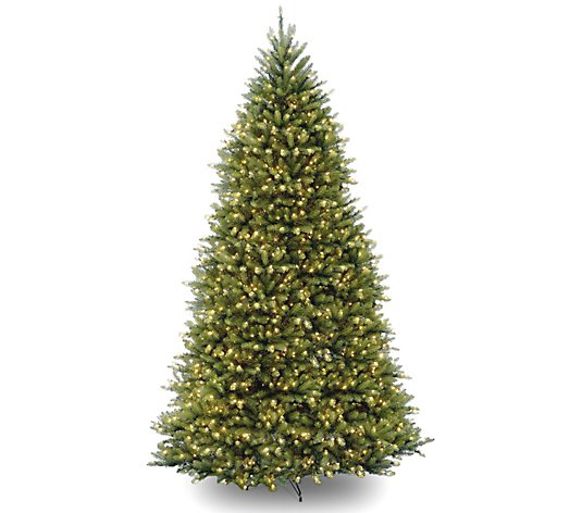 National Tree Co. 10' Dunhill Fir Tree with Clear Lights