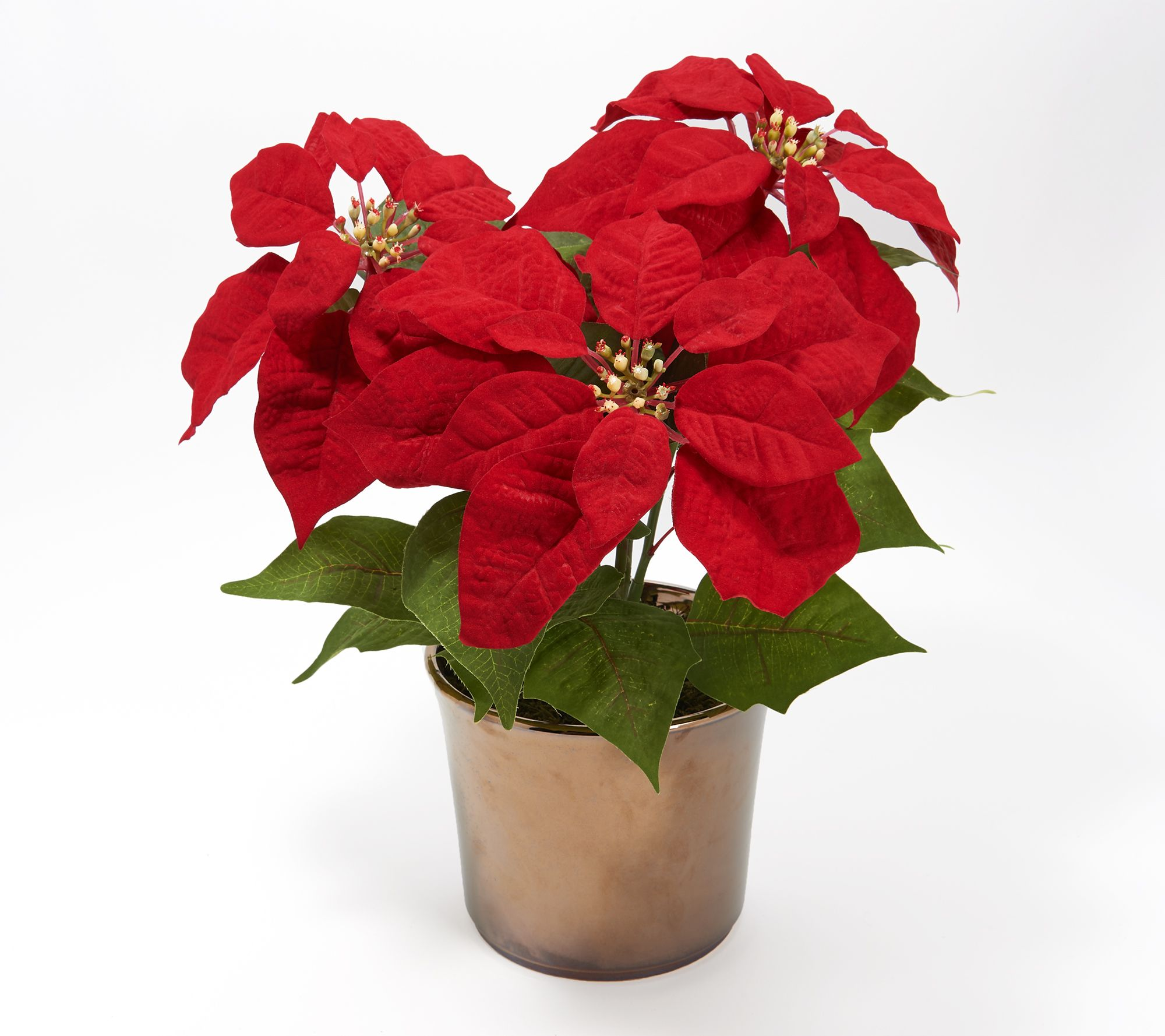 Faux Poinsettia Plant In Metallic Gold Pot By Peony Qvc Com
