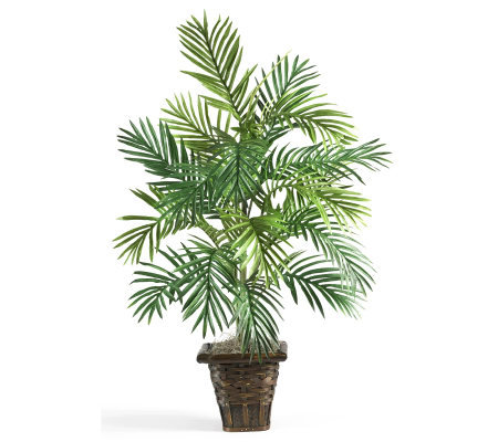 Areca Palm with Wicker Basket by Nearly Natural