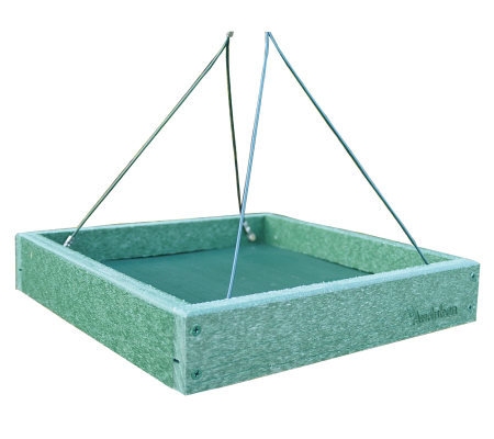 Go Green Platform Feeder
