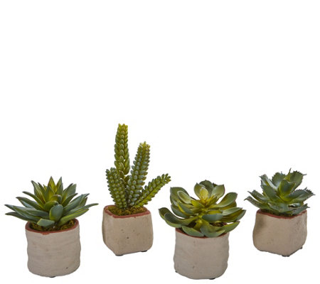 Mixed Succulent Lifelike Plant by Nearly Natural - Set of 4