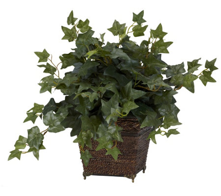 Puff Ivy In Coiled Rope Planter By Nearly Natural
