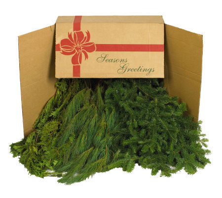 Delivery Week 11 18 10 Lb Box Of Mixed Greens By Valerie