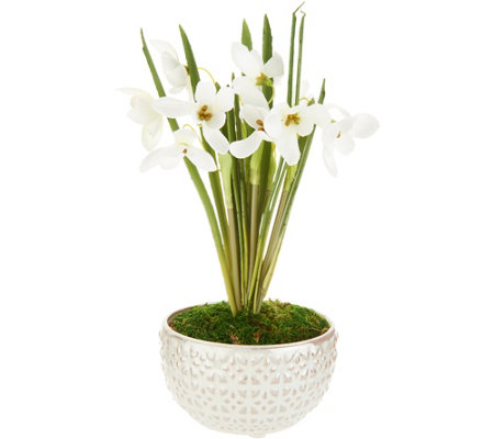 Potted Snowdrops in Marbled Ceramic Pot by Peony