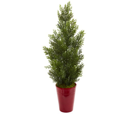 27 Mini Cedar Pine Tree In Planter By Nearly Natural