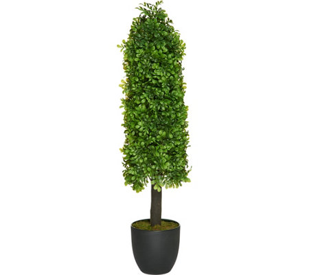 "37"" Indoor/Outdoor Boxwood Plant with Base by Valerie"