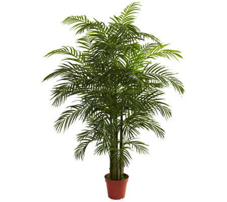 6.5' Areca Palm by Nearly Natural