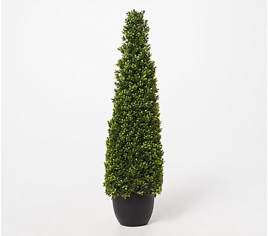 "40"" Indoor/ Outdoor Boxwood Cone Potted Topiary by Valerie"