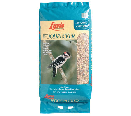 Lyric 20-lb Woodpecker Food Bag