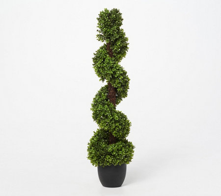"42"" Indoor/ Outdoor Spiral Boxwood Topaiary by Valerie"