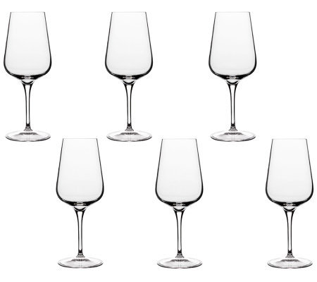 Luigi Bormioli 11.75-oz Intenso White Wine Glasses - Set of 6